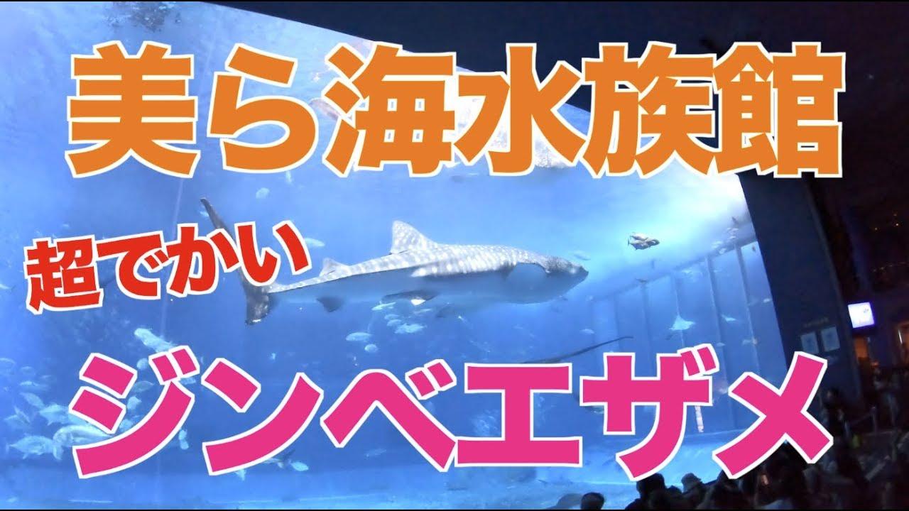 【2週間の沖縄滞在②】1〜4日目に行った観光地を一挙公開