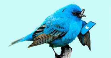 フォロワー5,000人いたTwitterをやめた理由、ツイッターをやめてどうなったか報告。
